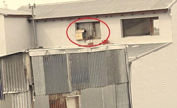 Denuncian que dejó a su perro en Ushuaia todo el invierno viviendo en una ventana - Infofueguina