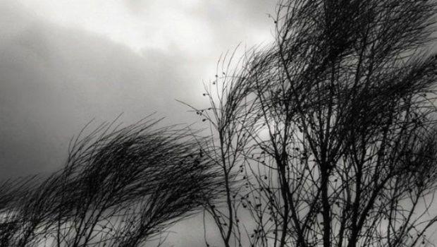Emiten alerta por fuertes vientos en toda la Provincia