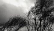 Alertan por vientos fuertes en la provincia
