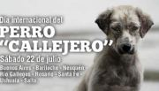 Ushuaia marchará por el día del perro callejero